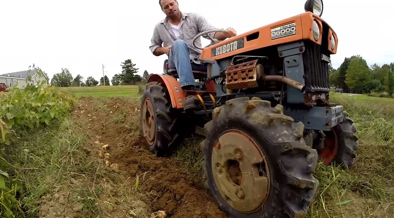 Ford Orchard Tractor : Orchard tractors for sale used