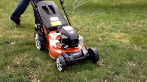 push lawn mower in a garden