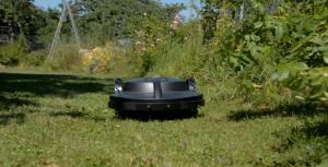 robot lawn mower cutting grass