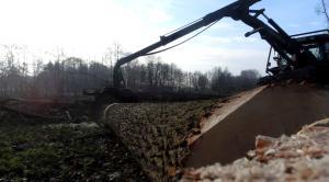 Forsttraktor im Wald