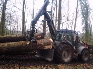 Forsttraktor zieht Baumstämme