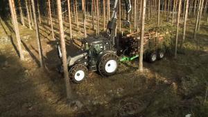 Baumtransport mit Forstschlepper