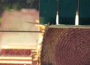 Procesando madera
